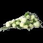 Hvid Bårebuket med roser og årstidens hvide blomster